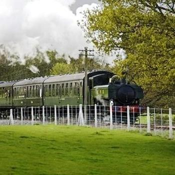 Enjoy the Kent scenery as you drive a steam train
